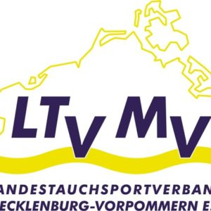 LTV-large